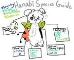 Hanabi Closed Species Guide !! by wishfultags