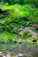The Green Sceene by Terza