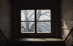 The Window by DeepColdWater