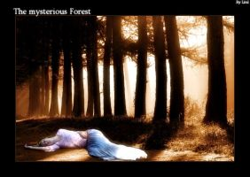 Mysterious forest by lital108
