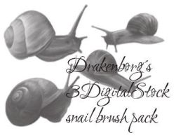 Snail brush pack by 3DigitalStock