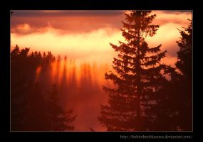 Float on Shadows by Behindmyblueeyes