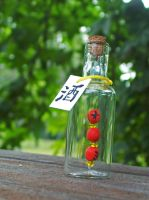 Japanese bottle by redcat1887