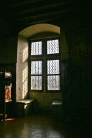 Window - Langeais Castle by Avaloniteaa