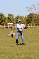 Cora Catches Falcon Luer by Kippenwolf