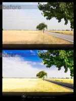 before - after: cherry tree 013 by KiwisaftDEsign