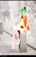 Vocaloid - Summer Dress by aco-rea