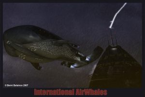 International AirWhales by bhippy
