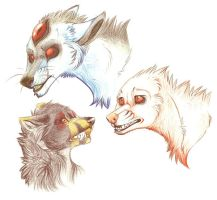 3 heads by LiLaiRa