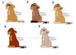 Male cub adopts (3/5 left) by Hypericty