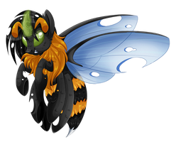 Bee Changeling by chris9801