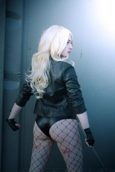 Black Canary from DC Comics by silverwolfieofficial