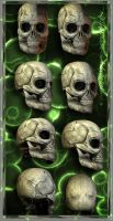skelletonheads by priesteres-stock