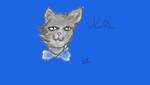 REQUEST: Kitten by snowflake20006