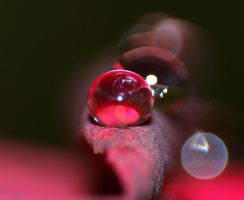 water droplet by willos2