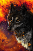 .:Late Autumn:. by WhiteSpiritWolf