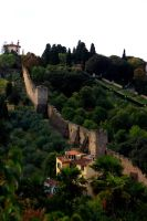Great wall of Florence? by mstargazer