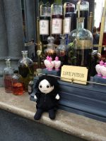 Love Potions! by dragoon811