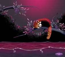 Lonely Red Panda by Hazey1988