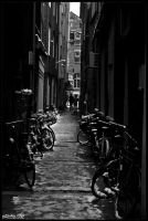 amsterdam 13 by mikeofek
