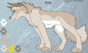 Milly: 2010 Ref Sheet by Dunkin-Prime