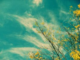 Hello, Autumn. by indie-click