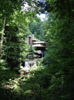 Fallingwater is beautiful. by bamboocath
