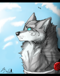 Blue Sky by Canis-Sum