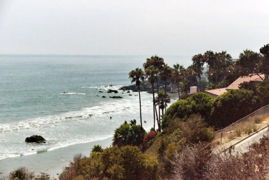 California Dreamin' by camouflaged