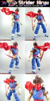 Custom MvsC Strider Hiryu by KyleRobinsonCustoms