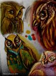 Owls! by Vaness15skittles