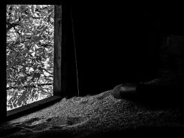 A Visitor BW by piechot