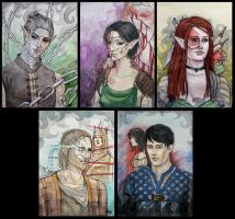 Characters of Dragon Age 2 by OkiDice