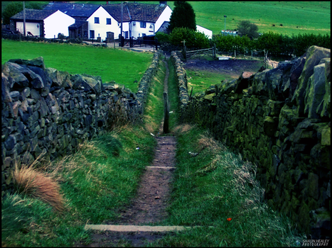 Path To The Farm House by theskitzo