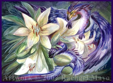 Dragon's Lily by rachaelm5