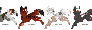 Point Auction: Wolves #1 ..::OPEN::.. by XxGoldenBlossomxX