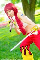 Erza Scarlet Fairy Tail Cosplay A-Kon 24 by firecloak