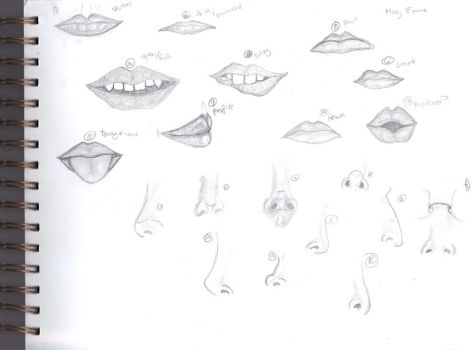 Studies: Mouth and Nose by ScilicetNimisVirgo