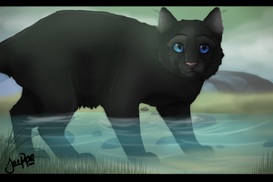 Reedwhisker of RiverClan by TheMoonfall