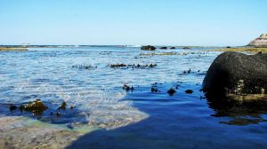 Tide Pools by wonenownlee