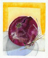 Food I Ate: Red Onion by lozartist
