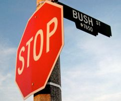 stop bush by ruthey