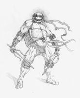 Teenage Mutant Ninja Turtle - Raphael by adammiconi