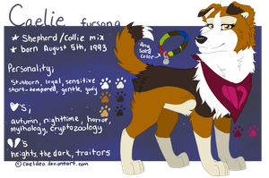 2013 REFERENCE: Fursona by Norjack