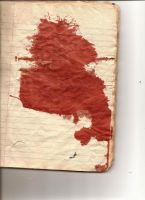 bloodstained journal by objekt-stock
