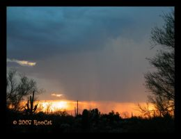 Downpour Monsoon Storm Sunset by RooCat