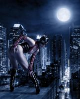 catwoman by Photorotic