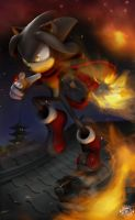 For Sonicolas by chemb0t