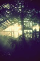 greenhouse by SUPER-Lala