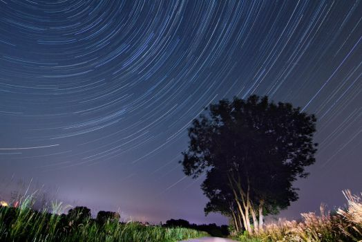 My first Star Trail Try by chrizzz6